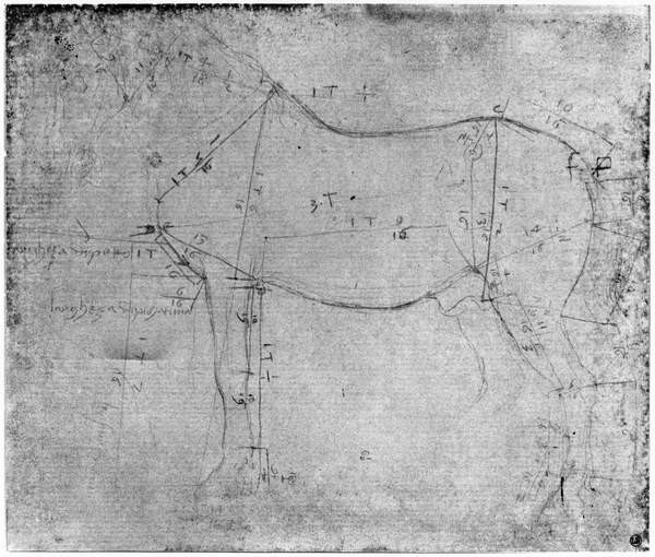 Fine Art Print Study of a Horse (metal point on paper)