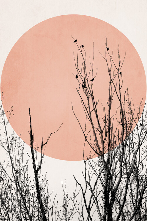Illustration Sunset Dreams