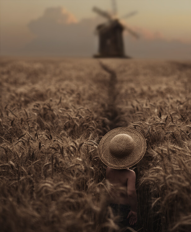 Art Photography The boy in the field