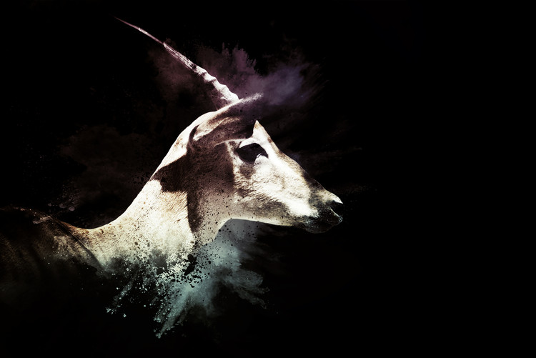 Art Photography The Impala