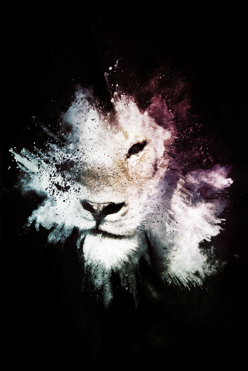 Art Photography The Lion