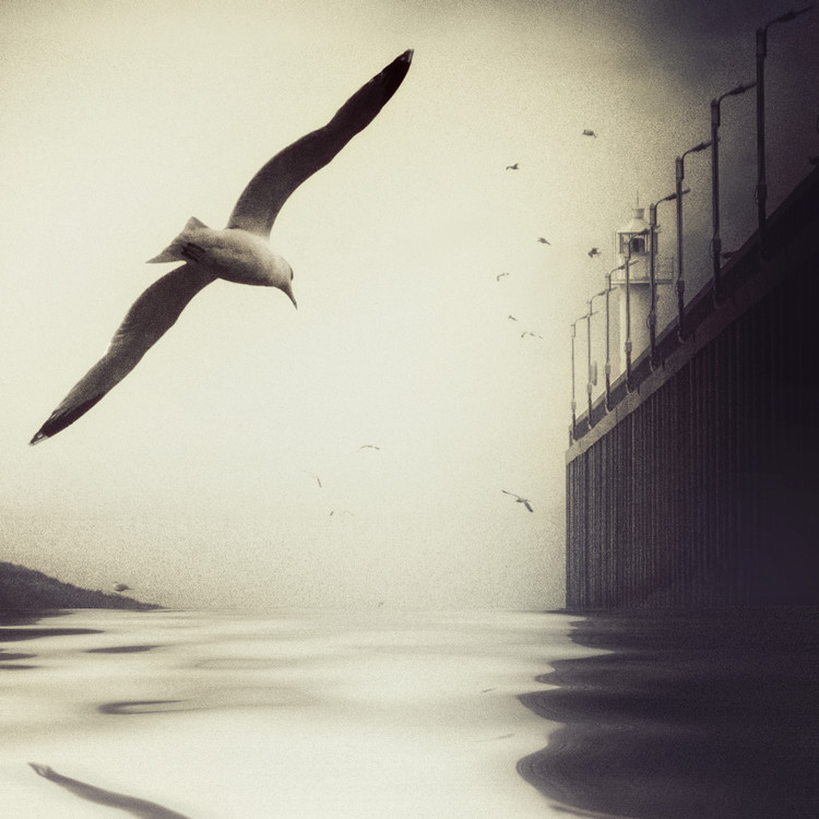Art Photography The Tide