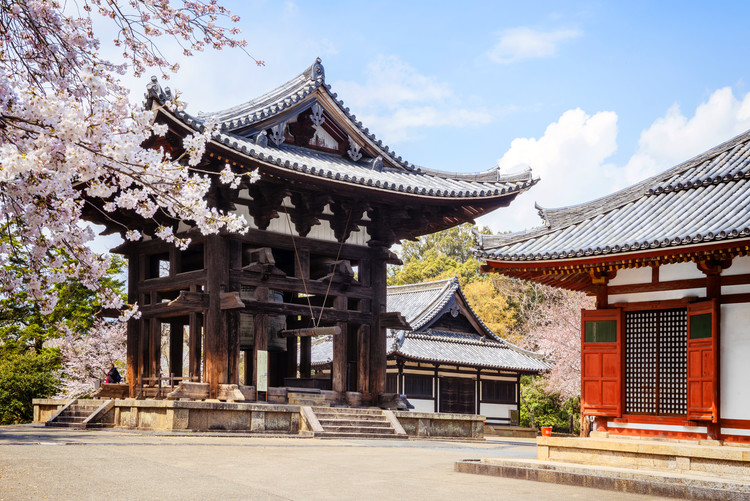 Art Photography Todai-Ji Temple