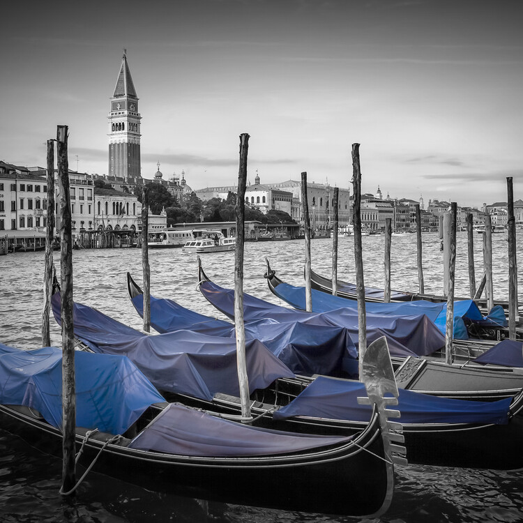Art Photography VENICE Grand Canal and St Mark's Campanile