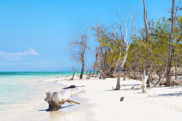 Art Photography White Sand Beach