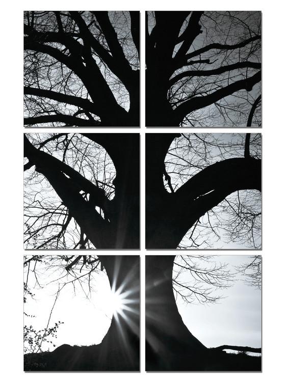 Arte moderna Tree - Silhouette (B&W)