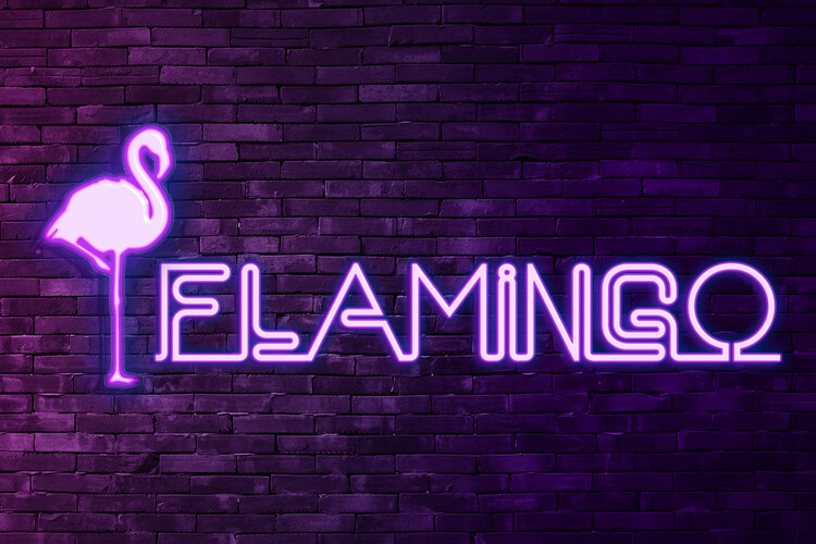 Arte Fotográfica Exclusiva Flamingo