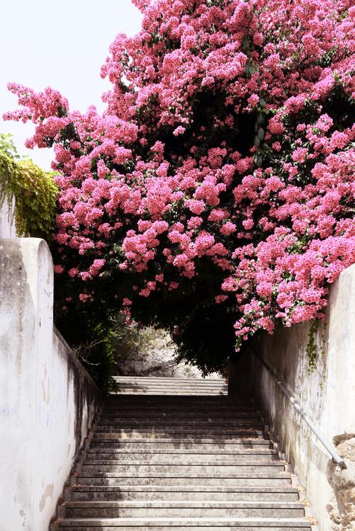 Arte Fotográfica Exclusiva Flowery Staircase