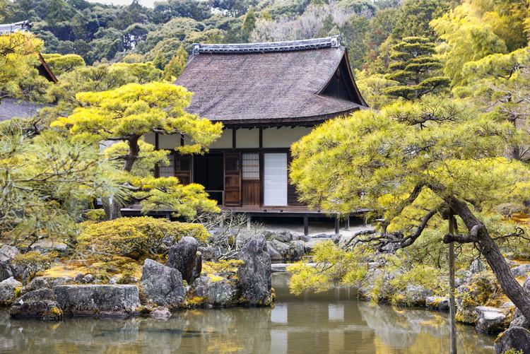Arte Fotográfica Exclusiva Ginkakuji Temple