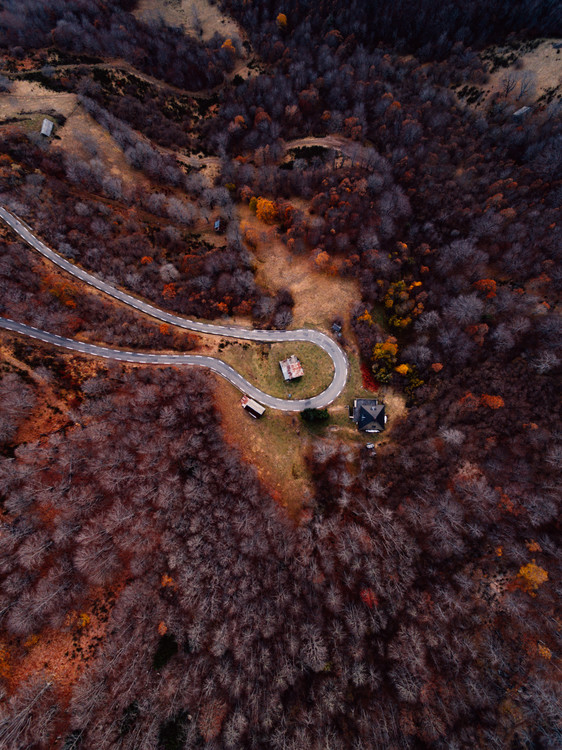 Arte Fotográfica Exclusiva Mountain road between autumn trees
