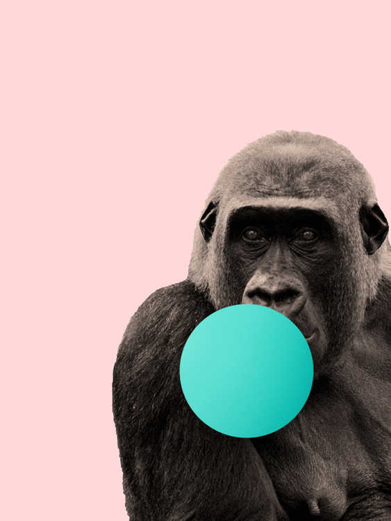 Arte Fotográfica Exclusiva Bubblegum gorilla