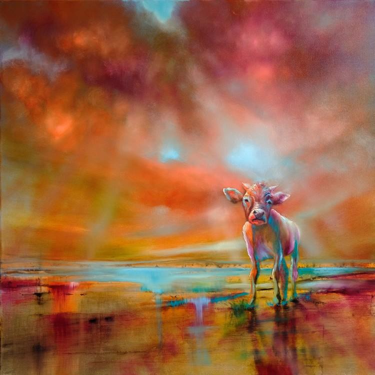Arte Fotográfica Exclusiva Colourful