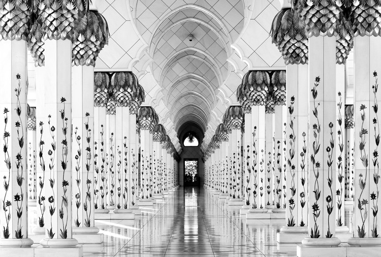 Arte Fotográfica Exclusiva Sheik Zayed Mosque