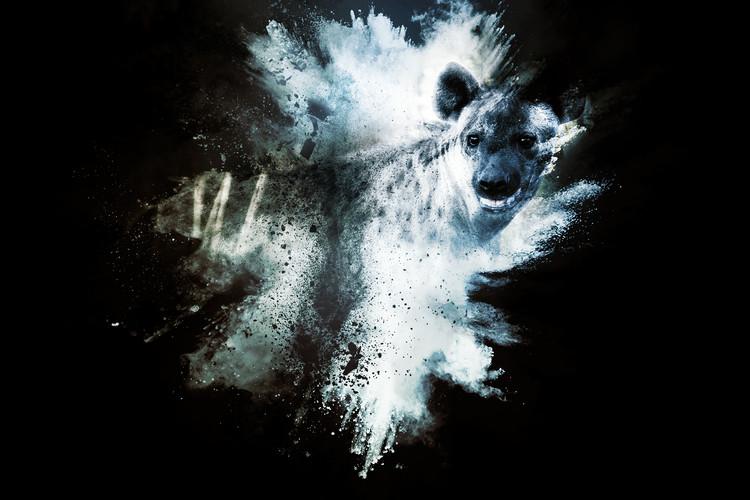 Arte Fotográfica Exclusiva The Hyena
