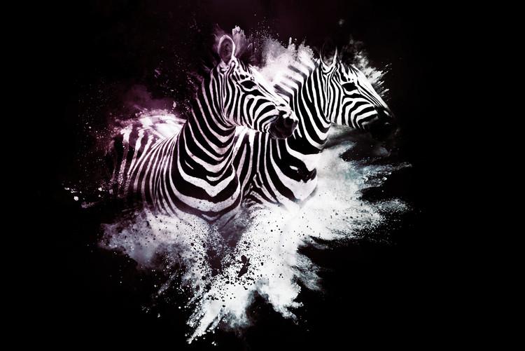 Arte Fotográfica Exclusiva The Zebras