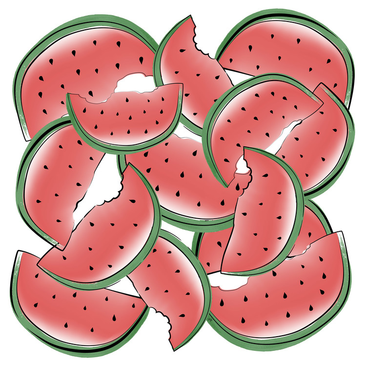 Arte Fotográfica Exclusiva Watermelon