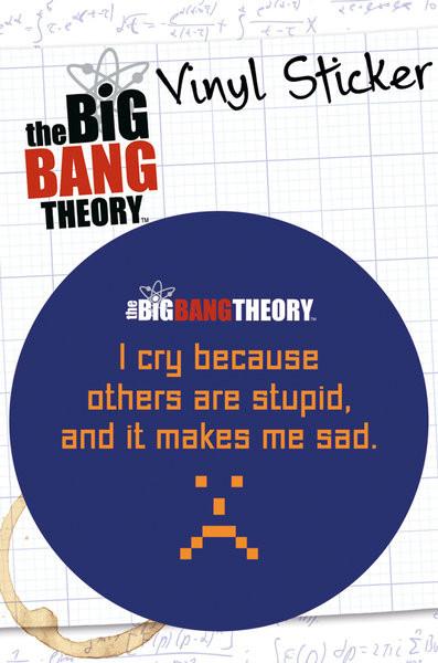 BIG BANG THEORY - stupid Autocollant
