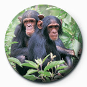 CHIMPS Badge