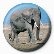 ELEPHANT Badge