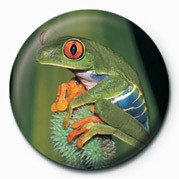 FROG Badges