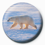 POLAR BEAR Badge