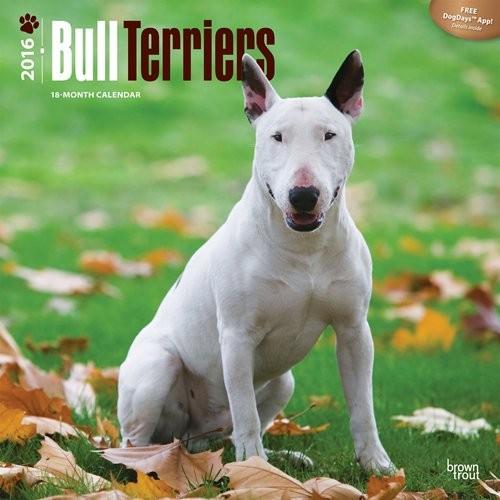 Calendar 2017 Bull Terriers