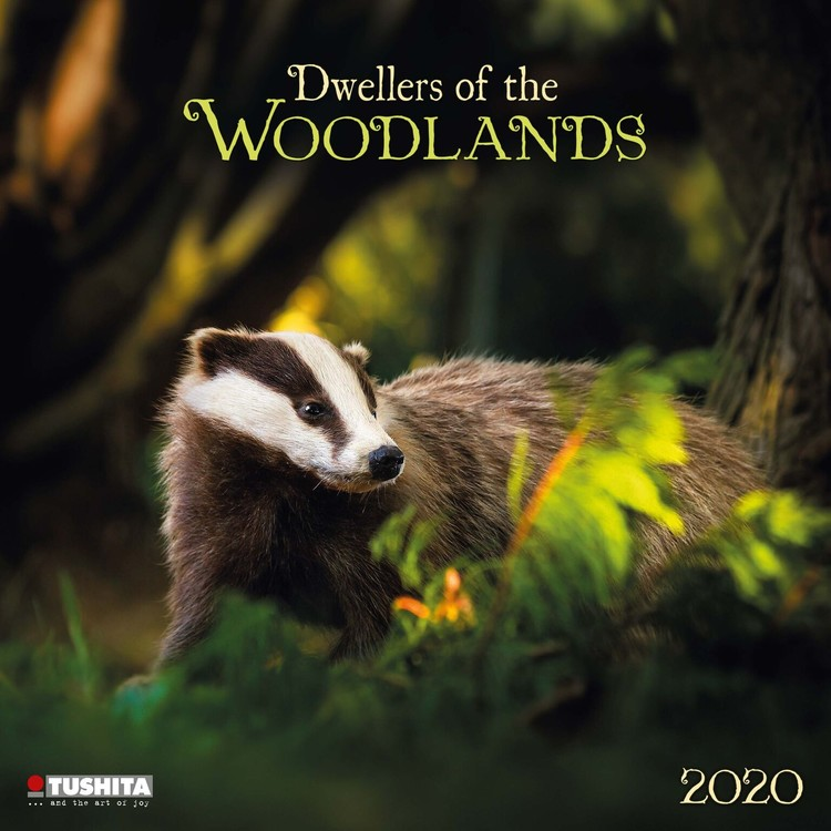 Calendar 2020  Forest Creatures