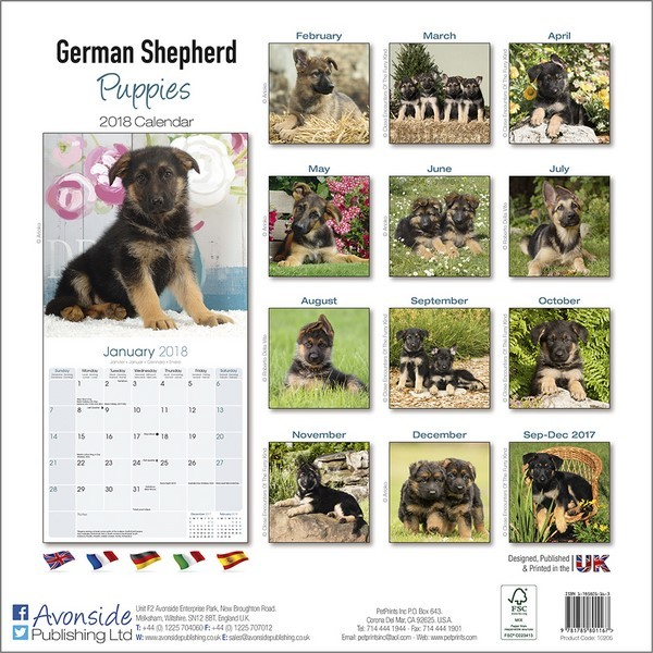Calendar 2018  German Shepherd