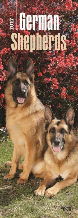 Calendar 2017 German Shepherds