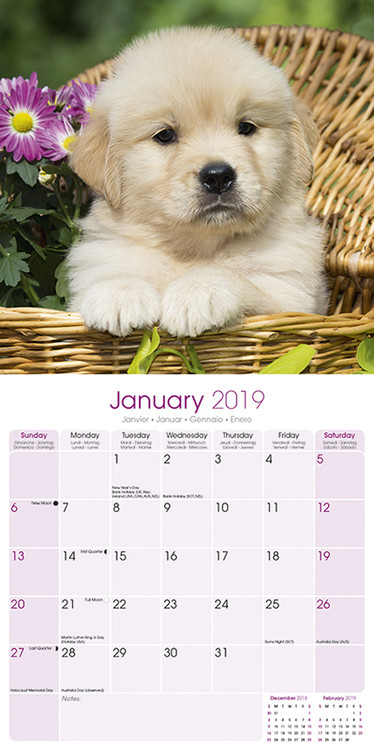 "Golden Retriever Puppies Glass Wall Clock 13/""X 13/"" Home Wall Decor Dogs New"
