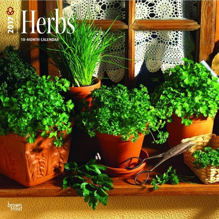 Calendar 2017 Herbs