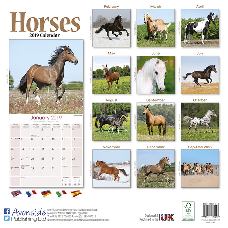 Calendar 2019  Horses