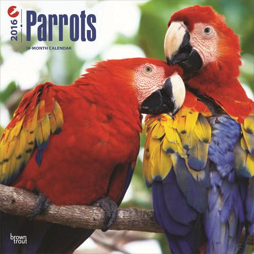 Calendar 2017 Parrots