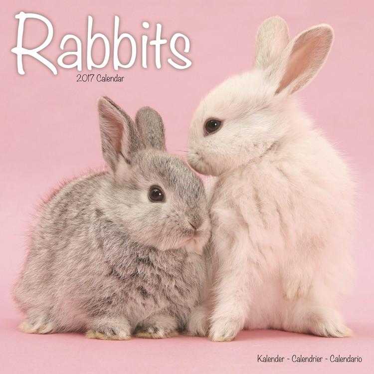 Calendar 2021 Rabbits