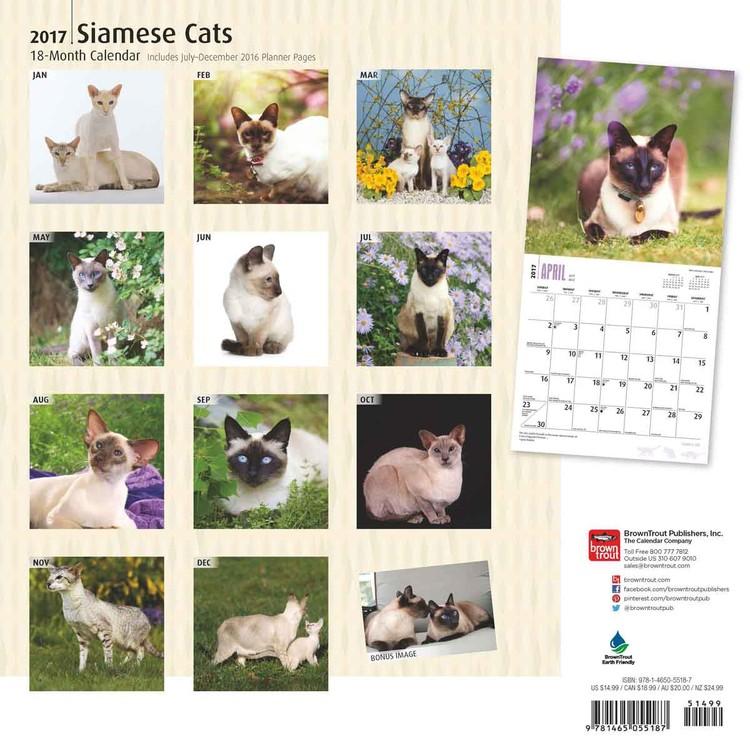 Calendar 2018 Siamese Cats