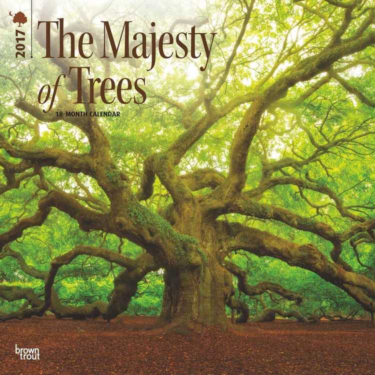 Calendar 2017 The Majesty of Trees