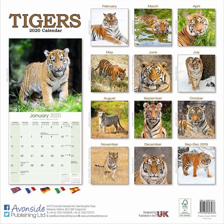 Calendar 2021 Tigers
