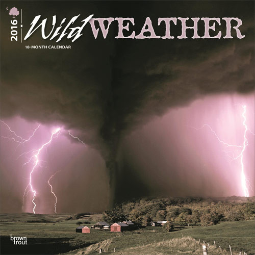 Calendar 2017 Wild Weather