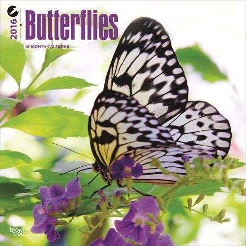 Calendário 2017 Butterflies