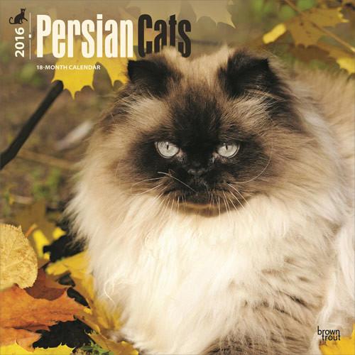 Calendário 2017 Persian Cats