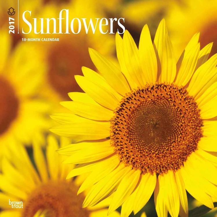 Calendário 2021 Sunflowers em Europosters.pt