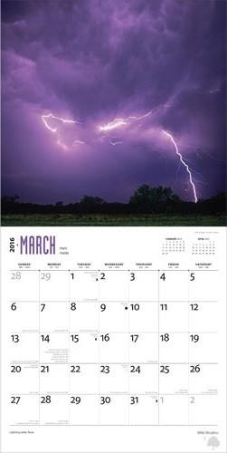 Calendário 2021 Wild Weather