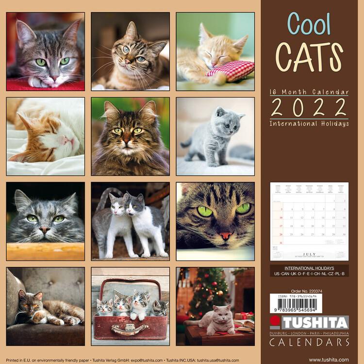 Calendar 2022 Cool Cats