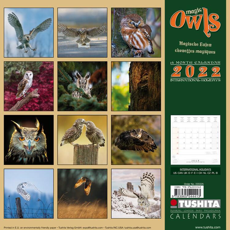 Calendar 2022 Magic Owls