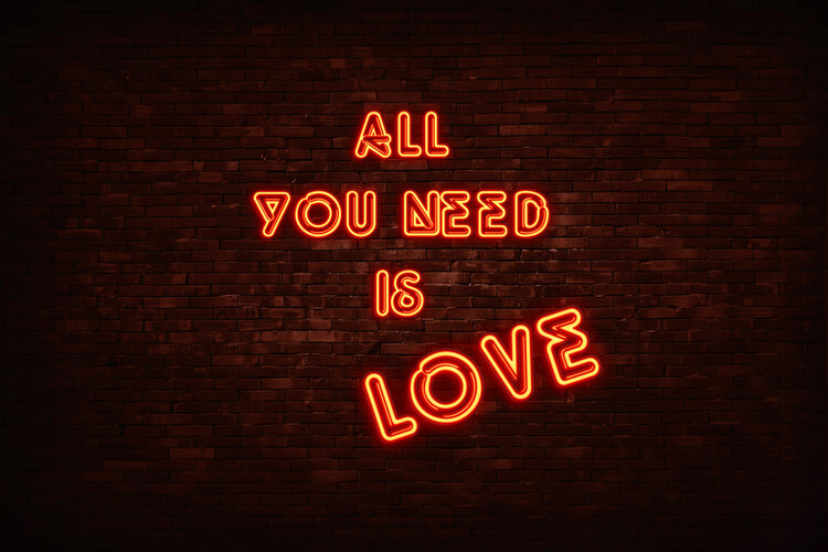 Canvas Print All you need is love
