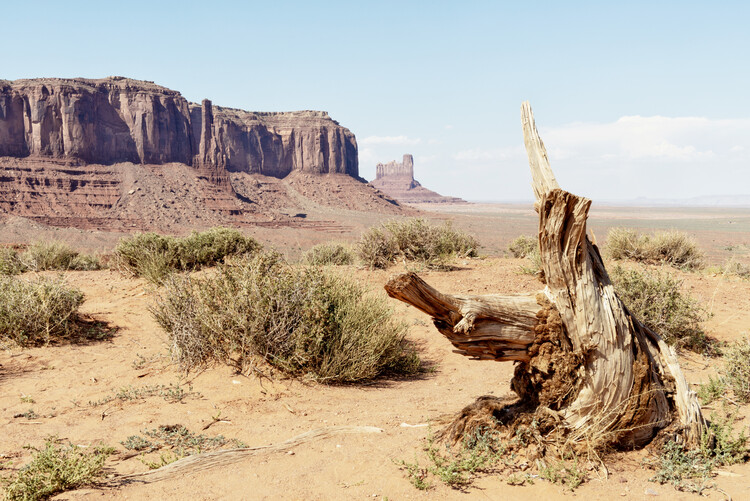 Canvas Print American West - Monument Valley