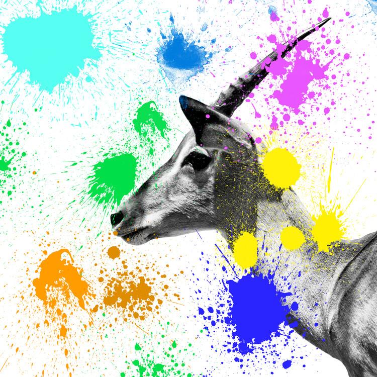 Canvas Print Antelope IV