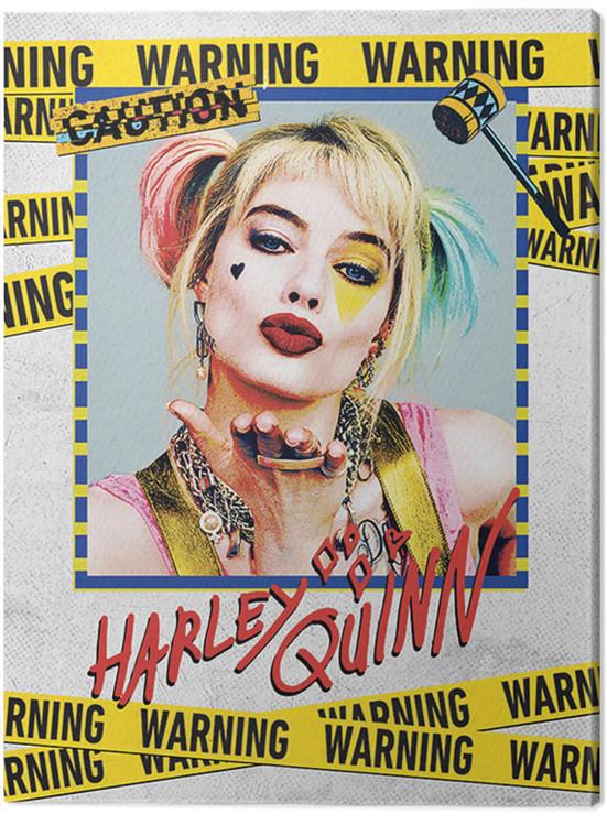 Birds Of Prey: And the Fantabulous Emancipation Of One Harley Quinn - Harley Quinn Warning Canvas Print