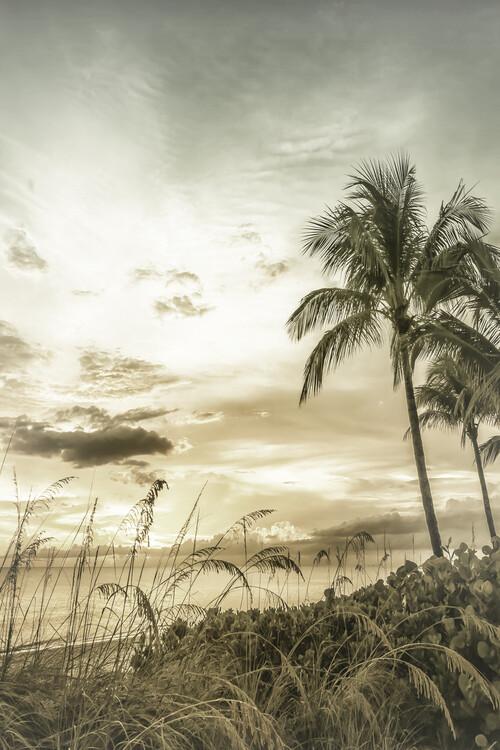 BONITA BEACH Bright Vintage Sunset Canvas Print
