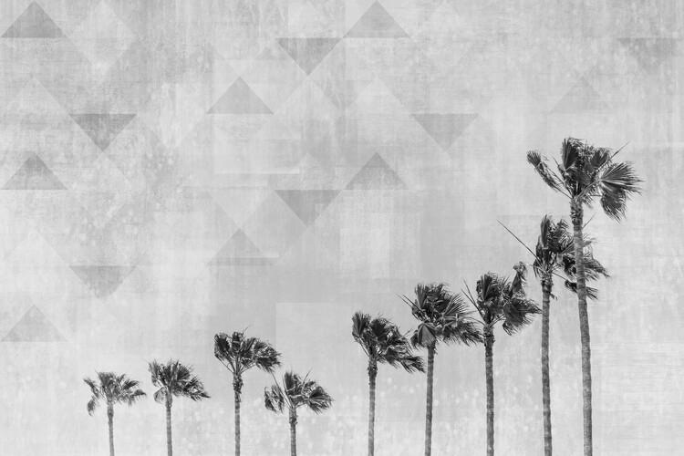California Vibes In Black & White Canvas Print